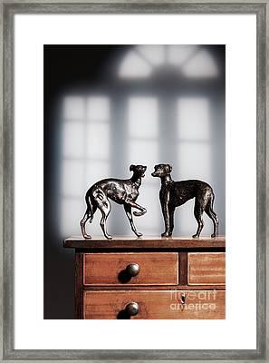 Antique Bronze Greyhound Dogs Framed Print by Amanda Elwell