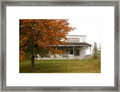Antique Colors Framed Print by Tess Haun