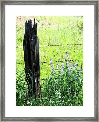 Antique Fence Post Framed Print