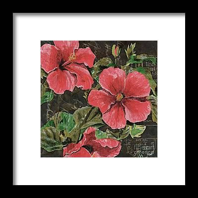 Hibiscus Framed Prints