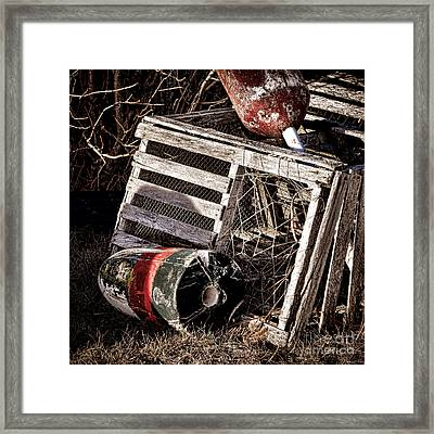 Antique Maine Lobster Trap  Framed Print by Olivier Le Queinec