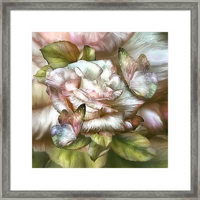 Antique Rose And Butterflies Framed Print