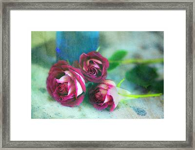 Antique Roses Framed Print