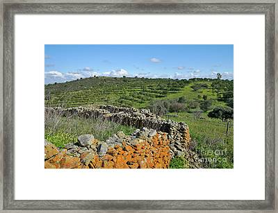 Antique Stone Wall Of An Old Farm Framed Print by Angelo DeVal