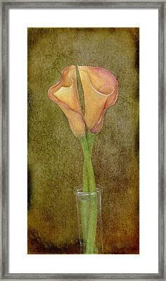 Antiqued Lilies Framed Print