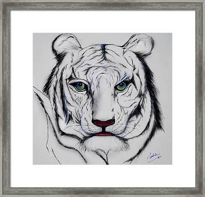 Antonio Framed Print