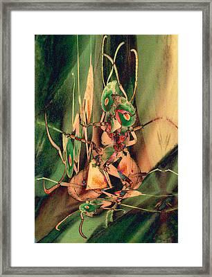 Antsy Lovers Framed Print