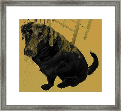 Any Chance I Can Go With You Framed Print by Lenore Senior