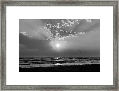 Any Color You Like Framed Print