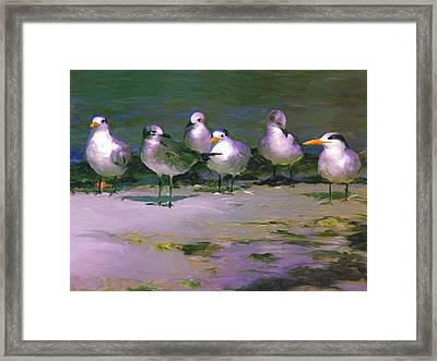 Any New Gossip Framed Print by David  Van Hulst