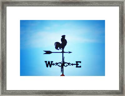 Any Way The Wind Blows Home Framed Print by Bill Cannon