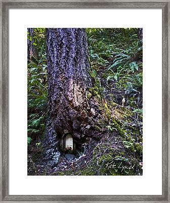 Anybody Home Framed Print