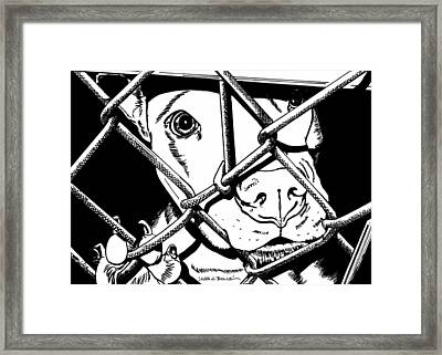 Anyone Out There Framed Print by Laura Bolle
