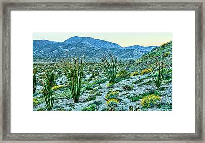 Anza Borrego Twillight Framed Print