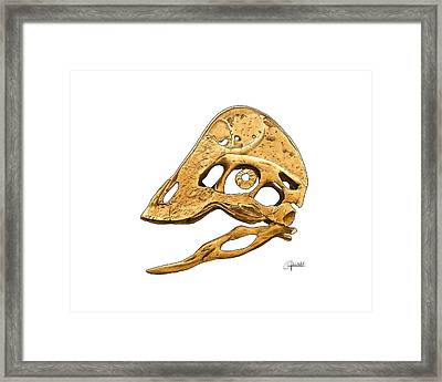Anzu Wyliei Skull Framed Print