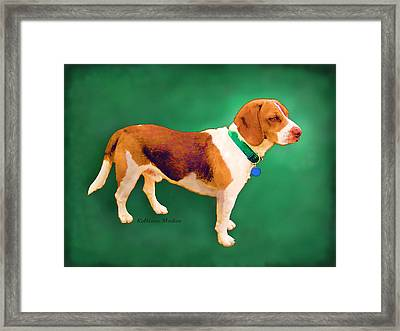 Apache Green Framed Print