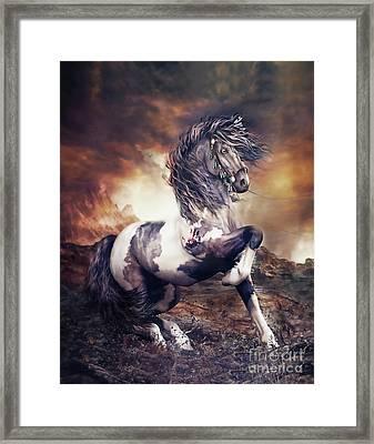 Apache War Horse Framed Print