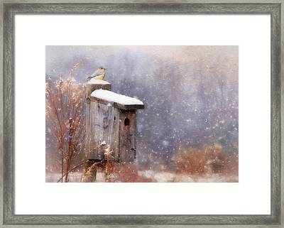 Apartment 25 Framed Print by Lori Deiter