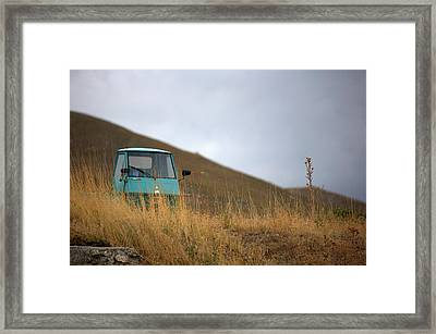 Ape 50 Framed Print by Tom  Doherty