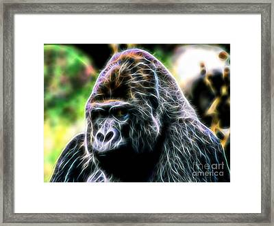 Ape Collection Framed Print