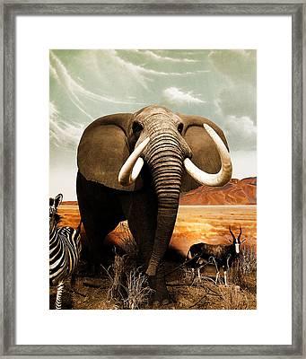 Apex Herbivore Framed Print by Arne Hansen