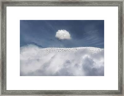 Apex Framed Print