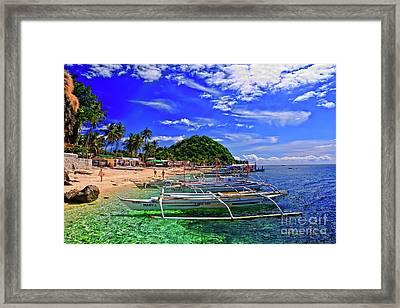 Apo Island Framed Print