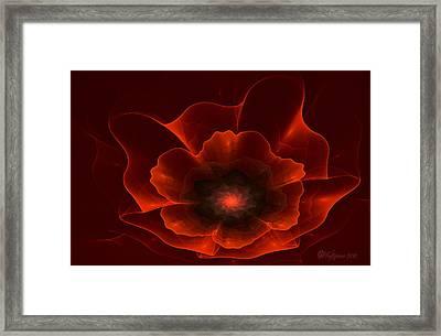 Apo Oriental Poppy Framed Print