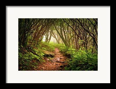 Hike Framed Prints