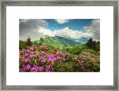 Appalachian Mountains Spring Flowers Scenic Landscape Asheville North Carolina Blue Ridge Parkway Framed Print