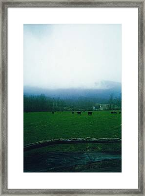 Appalachian Pasture Framed Print by Utopia Concepts