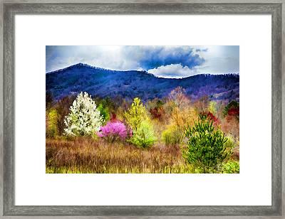 Appalachian Spring In The Holler Framed Print