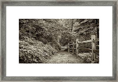 Appalachian Trail At Newfound Gap - Sepia Framed Print by Stephen Stookey