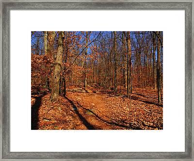 Appalachian Trail In Maryland 5 Framed Print by Raymond Salani III
