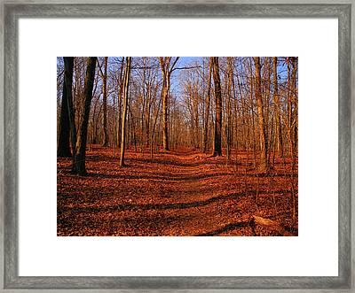 Appalachian Trail In Maryland Lambs Knoll Framed Print by Raymond Salani III