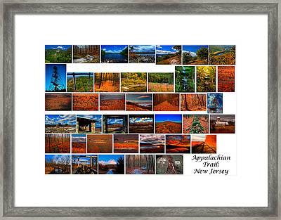 Appalachian Trail In New Jersey Framed Print by Raymond Salani III