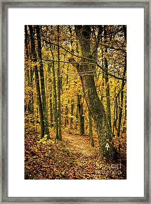 Framed Print featuring the photograph Appalachian Trail In The Blue Ridge In Autumn by Dan Carmichael