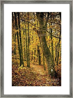 Framed Print featuring the photograph Appalachian Trail In The Blue Ridge In Autumn by Dan Carmichael