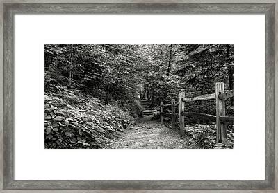 Appalachian Trail Trek Framed Print by Stephen Stookey