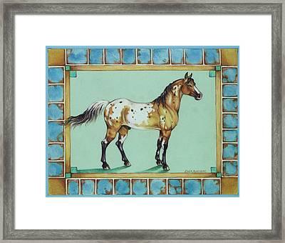 Appalossa Framed Print by Eden Alvernaz