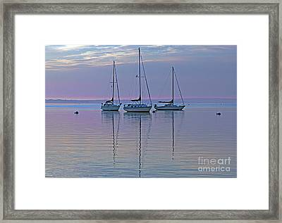 Appanoug Cove Sailboats Framed Print