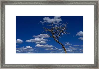 Apparition Framed Print by Skip Hunt