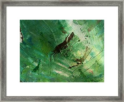 Appladorea Framed Print by TripsInInk
