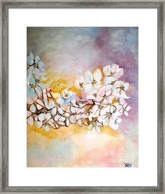 Apple Blooms Framed Print