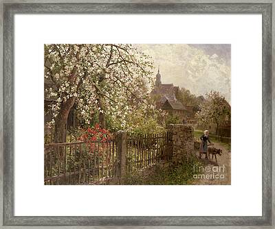 Apple Blossom Framed Print by Alfred Muhlig
