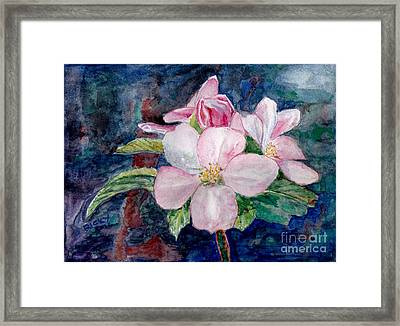 Apple Blossom - Painting Framed Print by Veronica Rickard