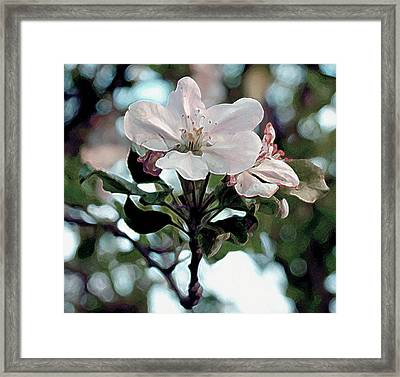 Framed Print featuring the painting Apple Blossom Time by RC deWinter