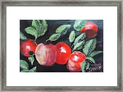Apple Bunch Framed Print