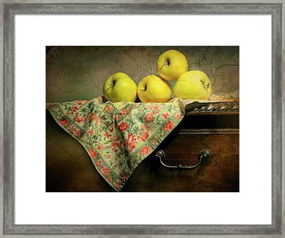 Framed Print featuring the photograph Apple Cloth by Diana Angstadt
