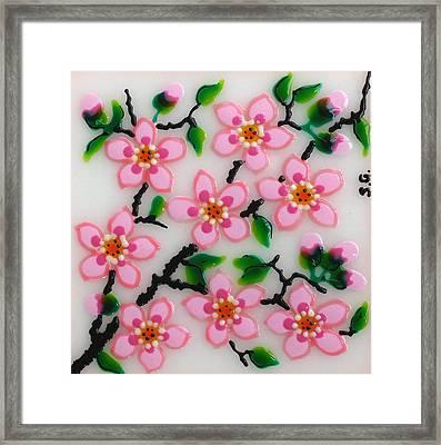 Apple Flower Framed Print by Gabriela Stavar